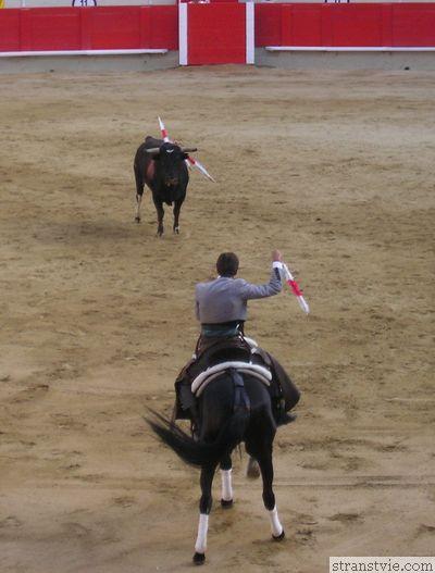 Тореадор на лошади