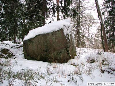 Огромный камень в парке Монрепо
