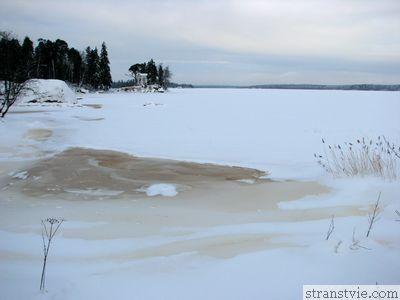 Озеро в Монрепо