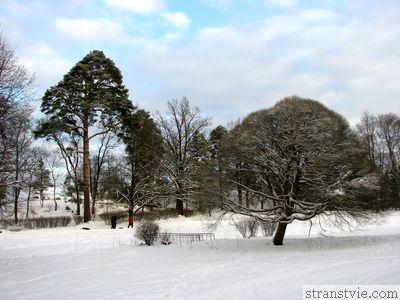 Парк недалеко от Выборга