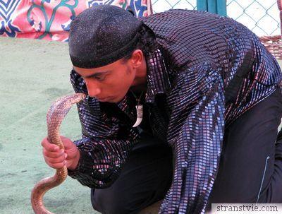 Змея и факир