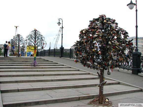 Деревья с замками на свадьбу
