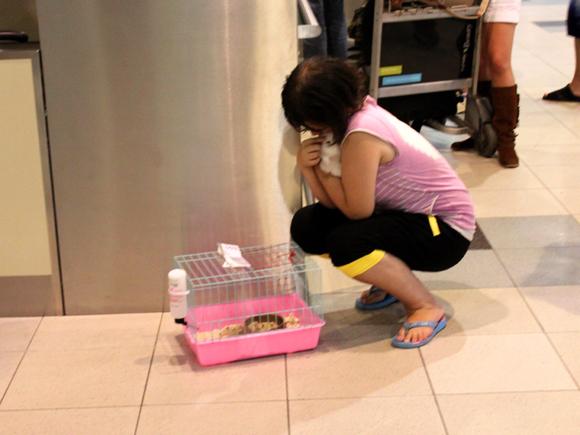 Девочка прощается с кроликом