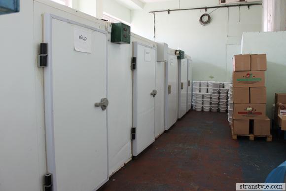 Холодильники на кондитерской фабрике